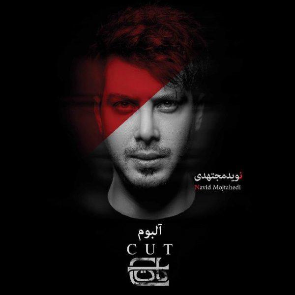 Navid Mojtahedi - Eshgh Lazem Daram