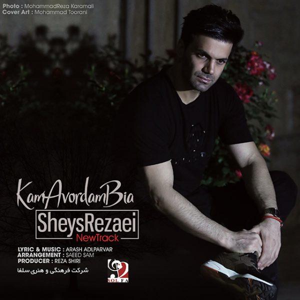 Sheys Rezaei - Kam Avordam Bia