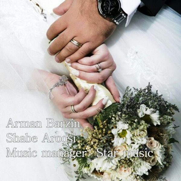 Arman Barzin - Shabe Aroosi
