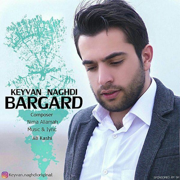 Keyvan Naghdi - Bargard