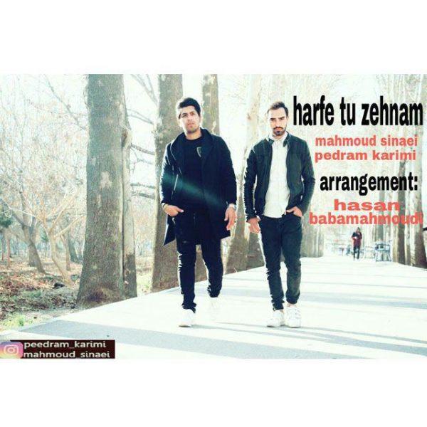 MahMoud Sinaei & Pedram Karimi - Harfe Tu Zehnam