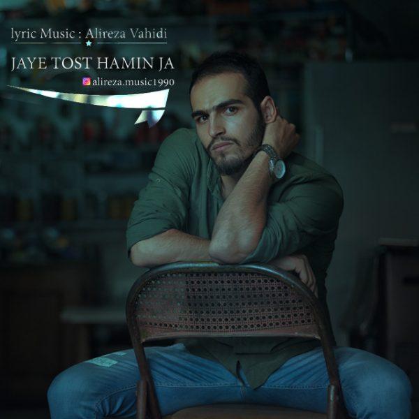 Alireza Vahidi - Jaye Tost Haminja