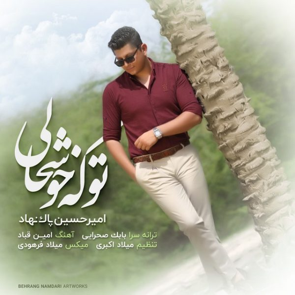 AmirHossein Paknahad - To Ke Khoshhali