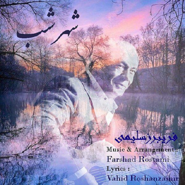 Fariborz Salimi - Shahre Shab