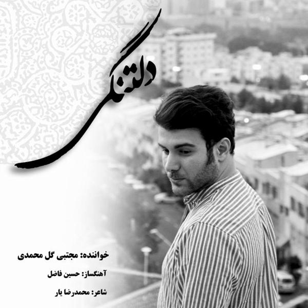 Mojtaba Golmohammadi - Deltangi