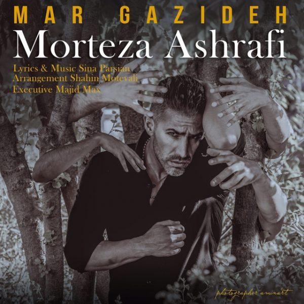 Morteza Ashrafi - Mar Gazideh