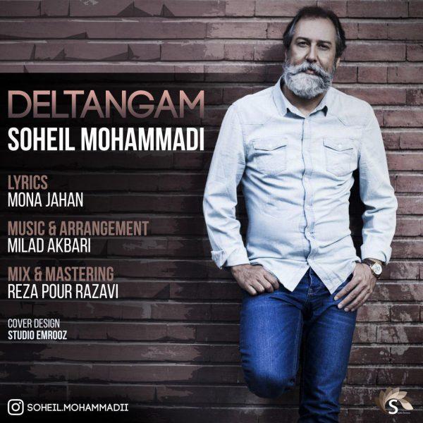 Soheil Mohammadi - Deltangam