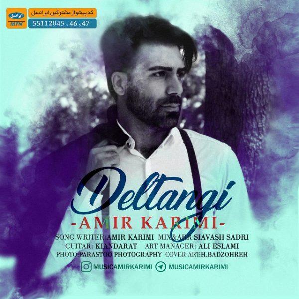 Amir Karimi - Deltangi