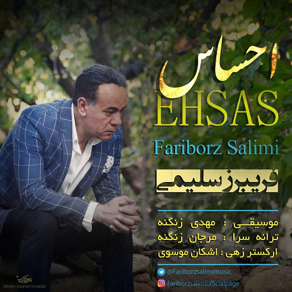 Fariborz Salimi - Ehsas