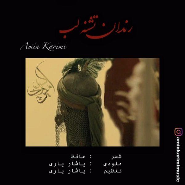 Amin Karimi - Rendan Teshne Lab