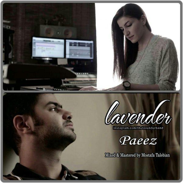Lavender - Paeez