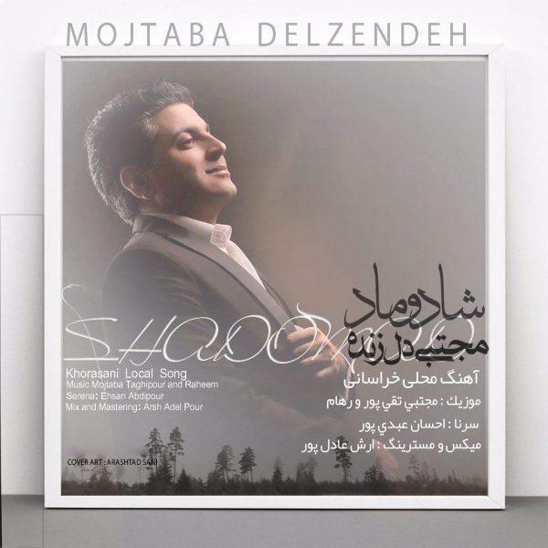 Mojtaba Delzendeh - Shadoomad