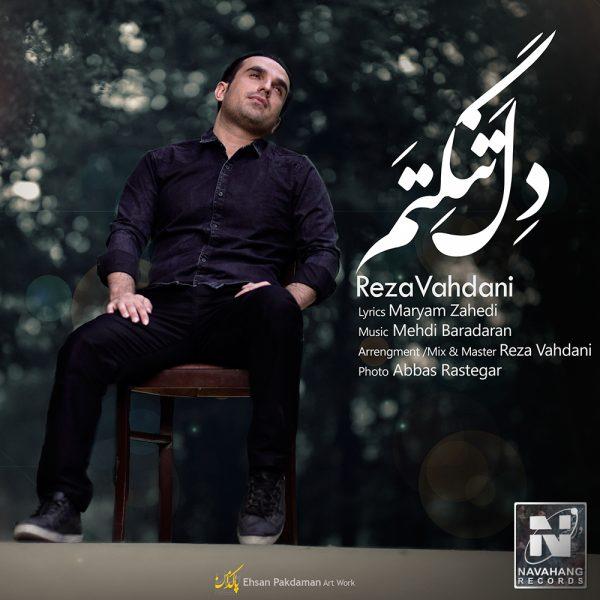 Reza Vahdani - Deltangetam