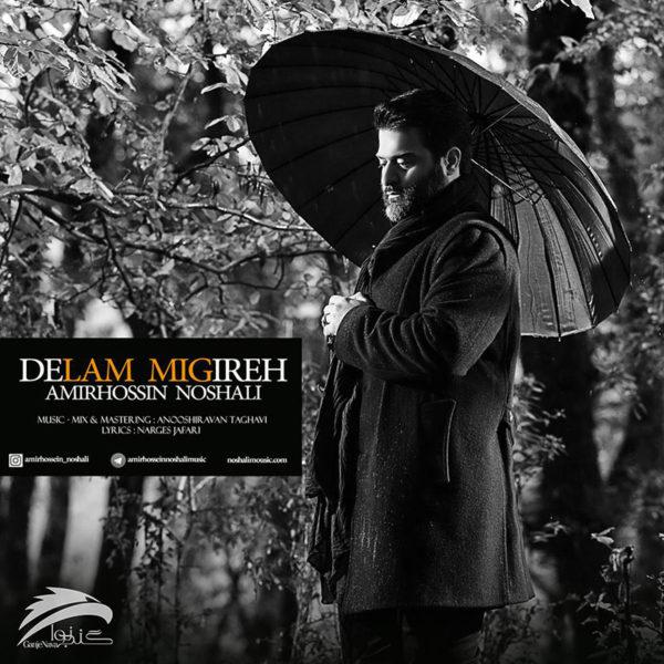 Amir Hossein Noshali - Delam Migireh