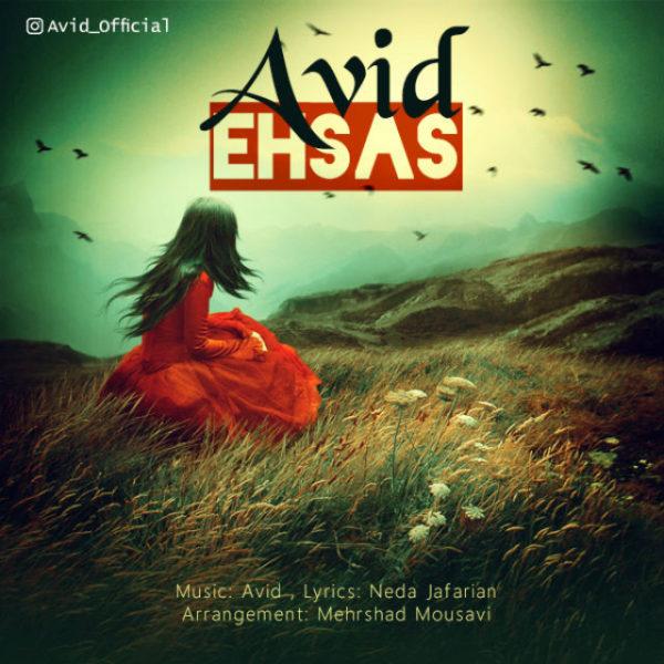 Avid - Ehsas