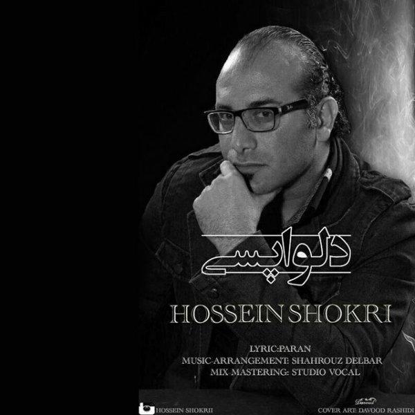 Hossein Shokri - Delvapasi