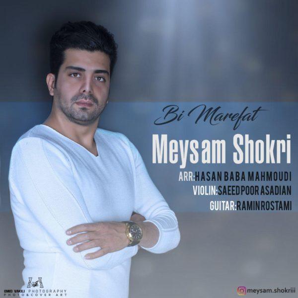 Meysam Shokri - Bimarefat