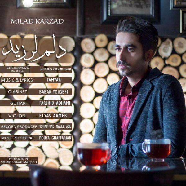 Milad Karzad - Delam Larzid