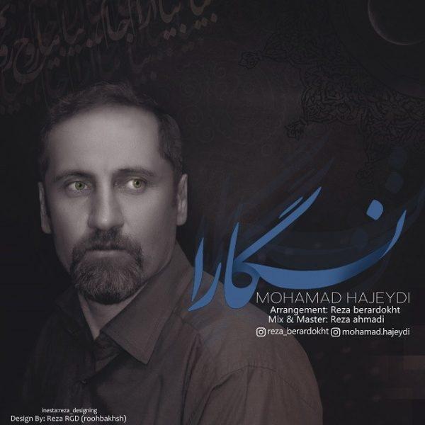 Mohamad Hajeydi - Negara