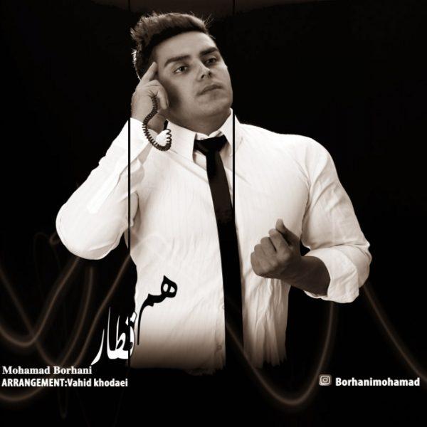 Mohammad Borhani - Hamghatar