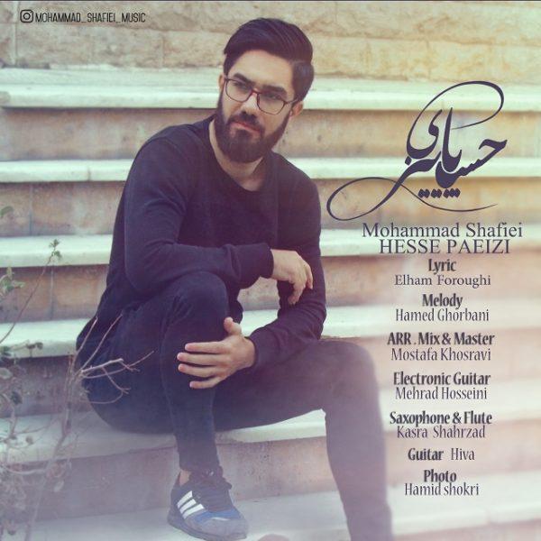 Mohammad Shafiee - Hesse Paeezi