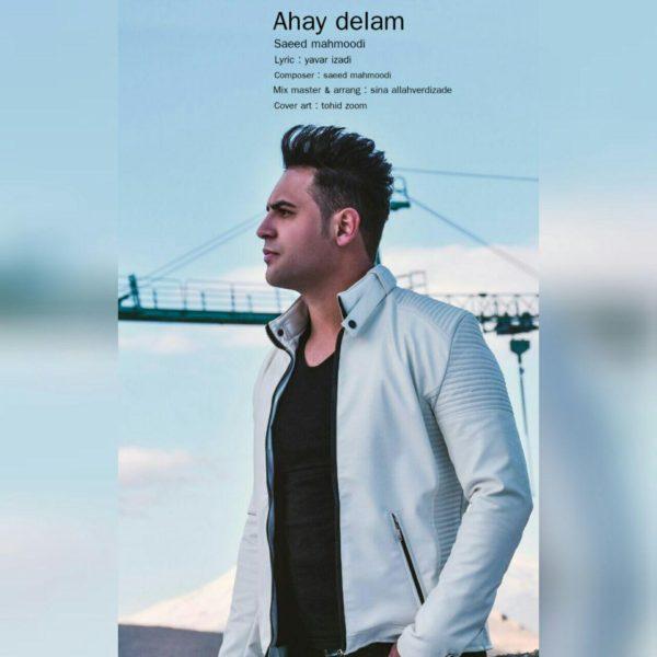 Saeed Mahmoodi - Ahay Delam