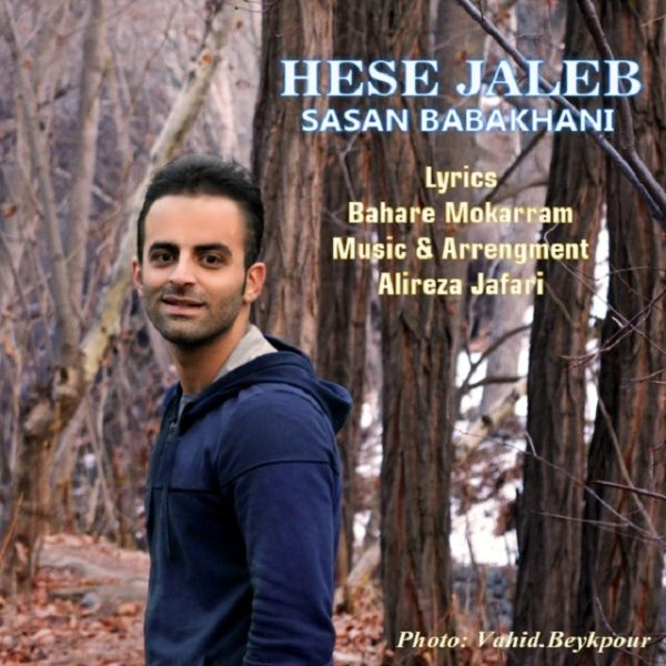 Sasan Babakhani - Hese Jaleb