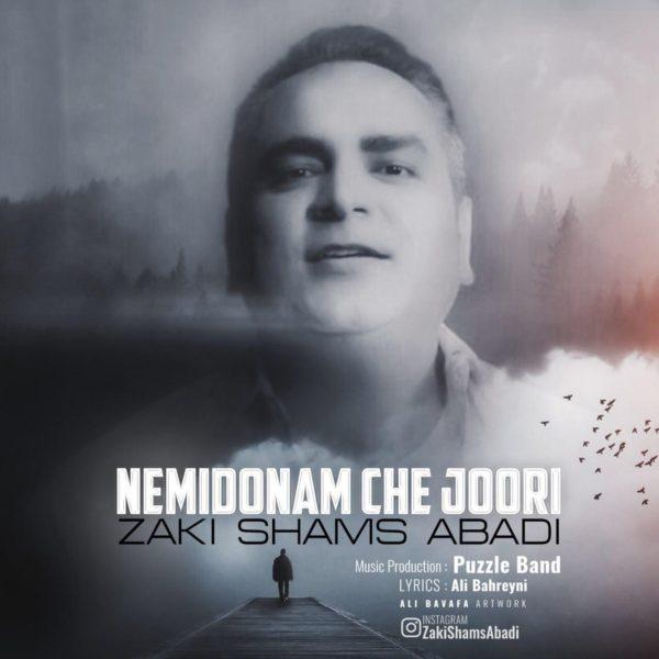 Zaki Shams Abadi - Nemidoonam Chejoori