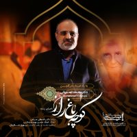 Mohammad Esfahani – Koocheh Baghe Raaz (Live)