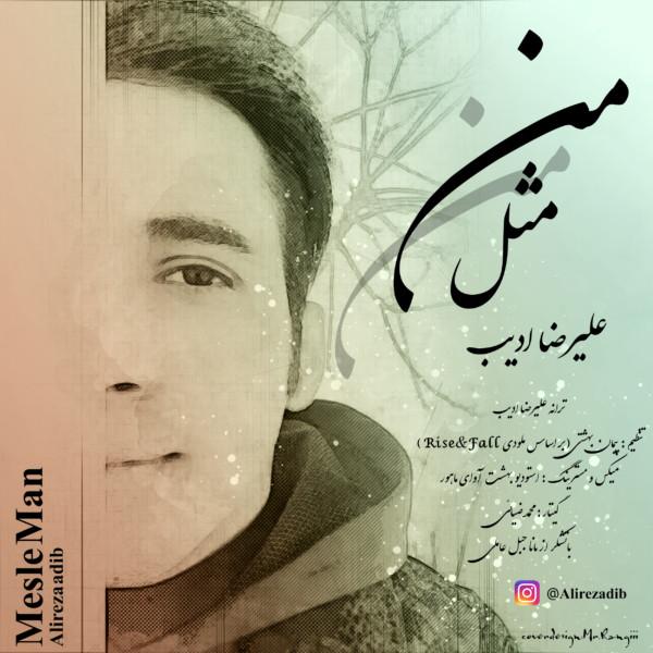 Alireza Adib - Mesle Man