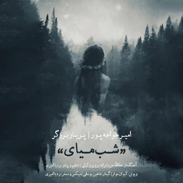 Amir Khajehpour & Parinaz Barzegar - Shab Miyay