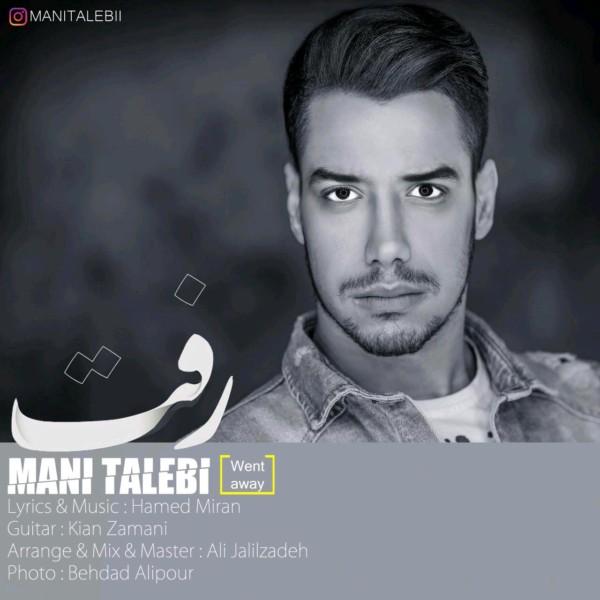 Mani Talebi - Raft