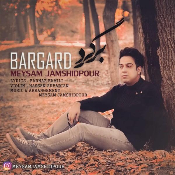 Meysam Jamshidpour - Bargard