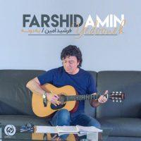 Farshid Amin – Yedooneh