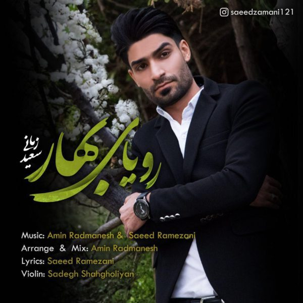 Saeed Zamani - Royaye Bahar