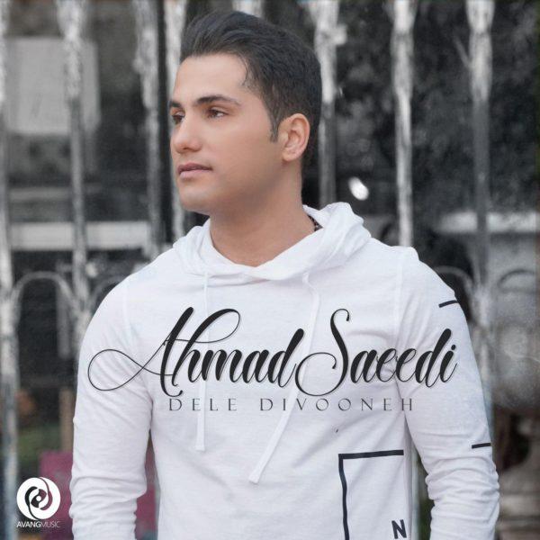 Ahmad Saeedi - Dele Divooneh