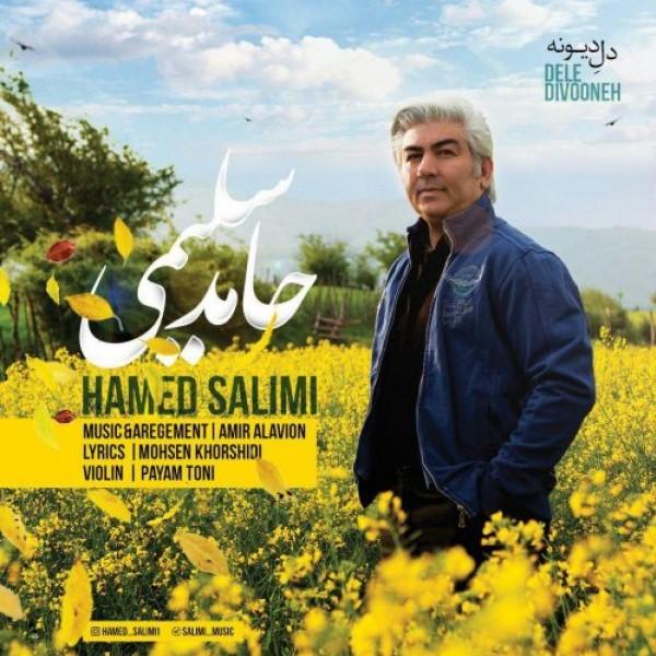 Hamed Salimi - Dele Divooneh