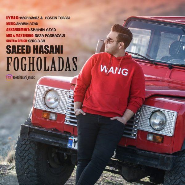 Saeed Hasani - Fogholadas